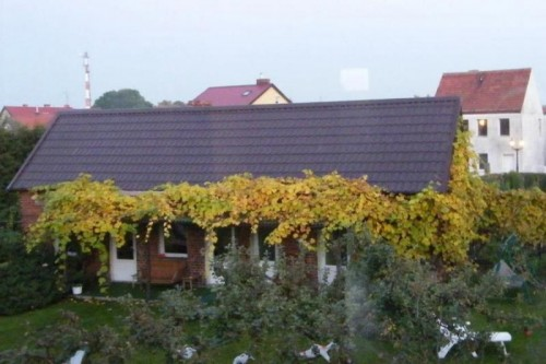 """Pod winogronami"" – domek na lato"